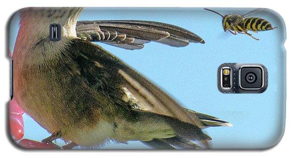 Bee_bird Galaxy S5 Case
