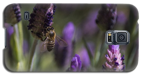 Galaxy S5 Case featuring the photograph Bee's Delight by Laura Pratt