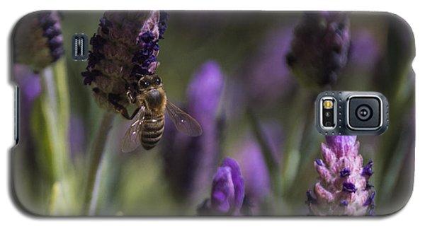 Bee's Delight Galaxy S5 Case