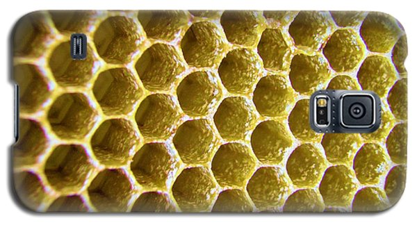 Bee's Home Galaxy S5 Case