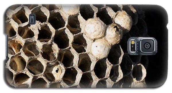 Bee's Nest Galaxy S5 Case