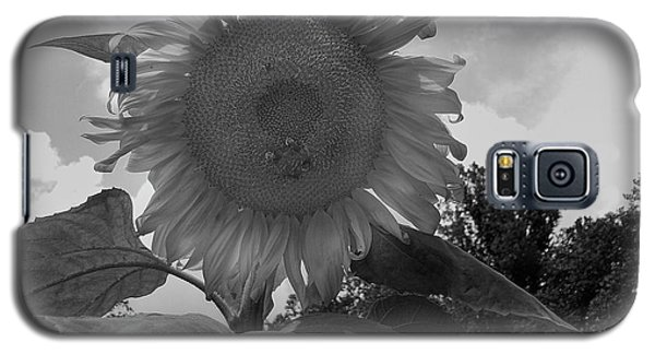 Galaxy S5 Case featuring the digital art Bees On A Sunflower by Chris Flees