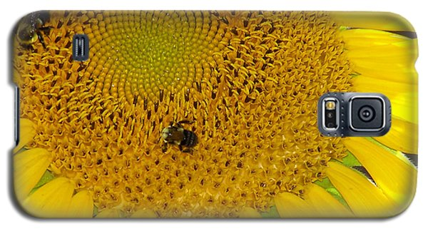 Galaxy S5 Case featuring the photograph Bees Share A Sunflower by Sandi OReilly