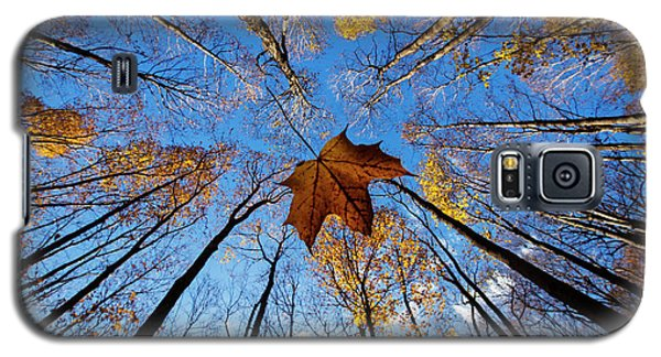 Galaxy S5 Case featuring the photograph Before The First Snow by Mircea Costina Photography