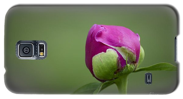Galaxy S5 Case featuring the photograph Simple Beginnings by Andrea Silies