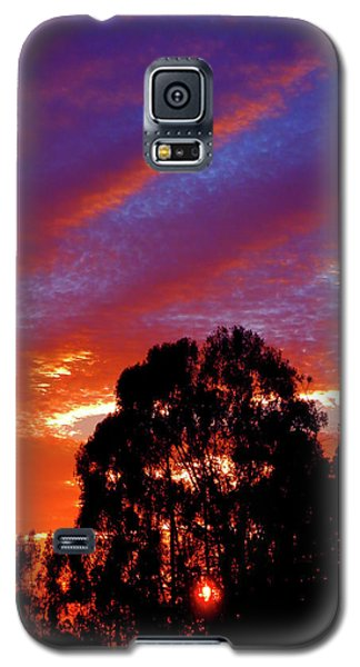 Being There Galaxy S5 Case