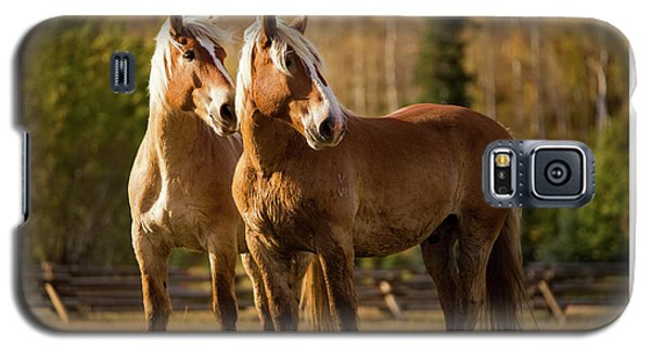 Galaxy S5 Case featuring the photograph Belgian Draft Horses by Sharon Jones