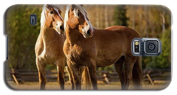 Belgian Draft Horses Galaxy S5 Case