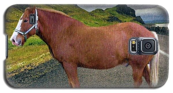 Belgian Horse Galaxy S5 Case
