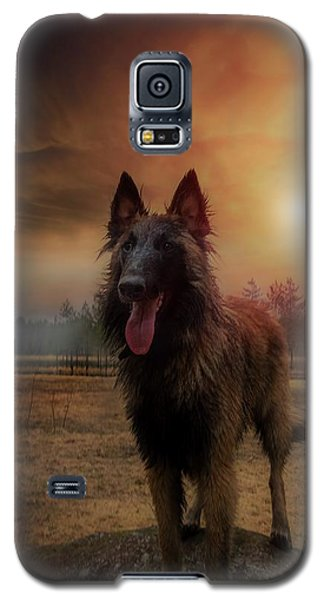 Belgian Shepherd Galaxy S5 Case by Rose-Marie Karlsen