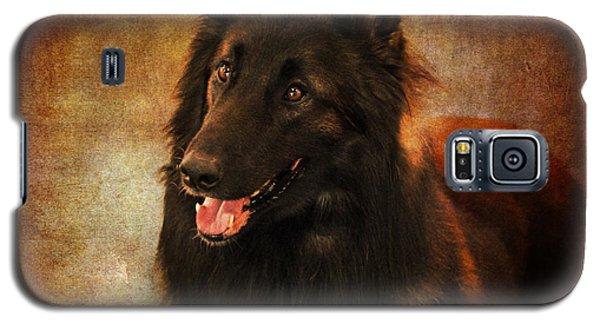 Belgian Tervuren Shepherd Galaxy S5 Case