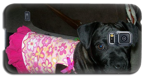 Bella In Swimsuit Galaxy S5 Case by Jewel Hengen