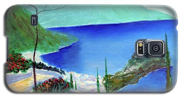 Bella Monaco  Galaxy S5 Case by Larry Cirigliano