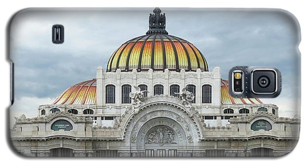 Bellas Artes Galaxy S5 Case