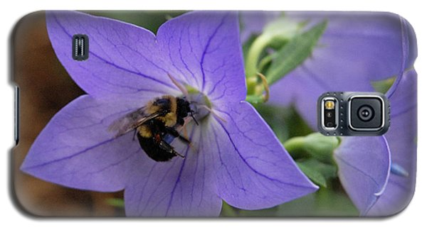 Galaxy S5 Case featuring the photograph Bellflower And Bee  by Marie Hicks
