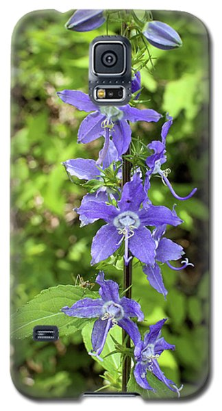 Galaxy S5 Case featuring the photograph Bellflower by Scott Kingery