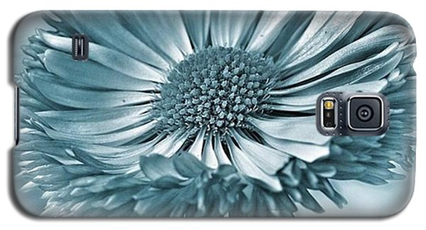 Bellis In Cyan  #flower #flowers Galaxy S5 Case by John Edwards