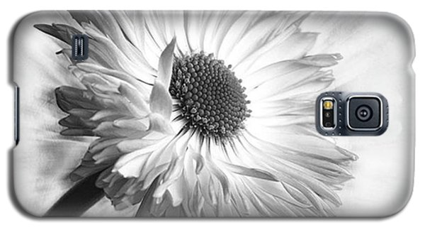 Bellis In Mono  #flower #flowers Galaxy S5 Case