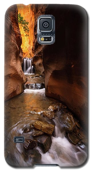 Galaxy S5 Case featuring the photograph Beloved by Dustin LeFevre