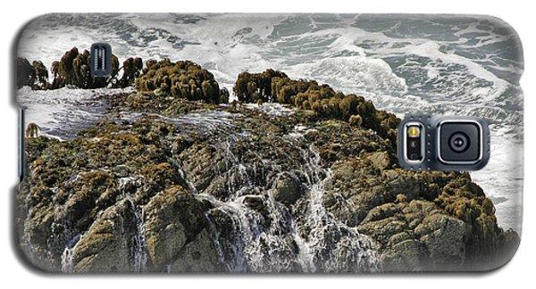 Below Salmon Creek Galaxy S5 Case