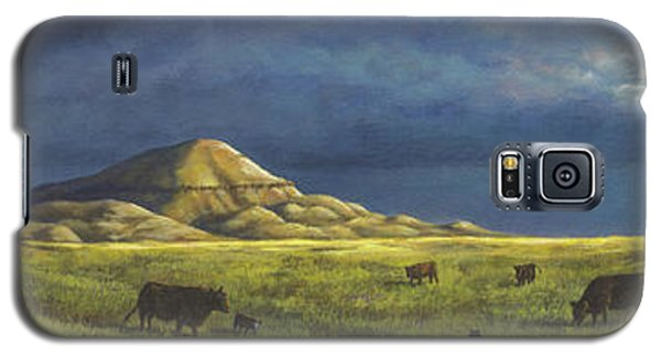 Belt Butte Spring Galaxy S5 Case