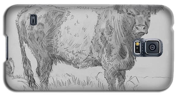 Belted Galloway Cow Pencil Drawing Galaxy S5 Case
