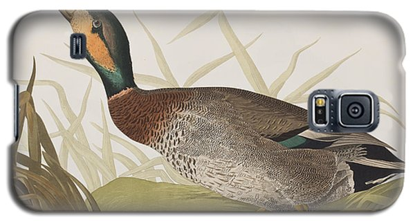 Bemaculated Duck Galaxy S5 Case by John James Audubon