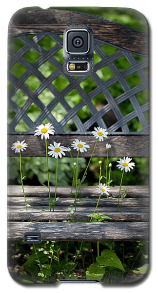Benched Galaxy S5 Case by Aaron Aldrich