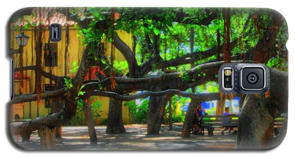 Beneath The Banyan Tree Galaxy S5 Case by DJ Florek