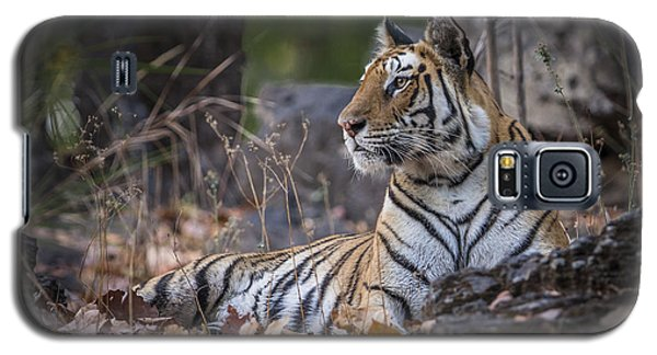 Bengal Tiger Galaxy S5 Case