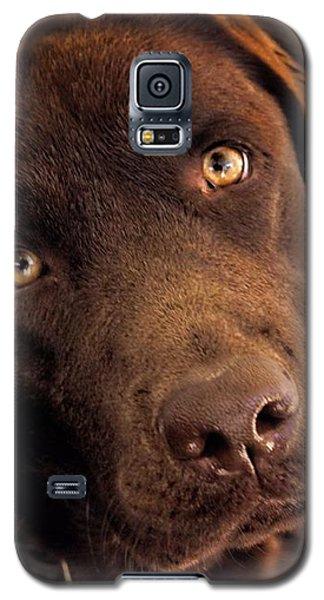 Benji Galaxy S5 Case