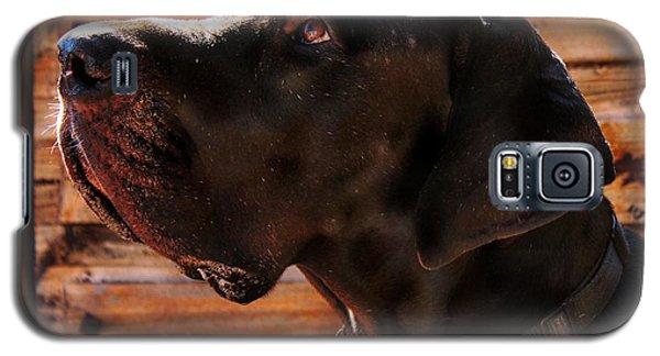 Benson Galaxy S5 Case