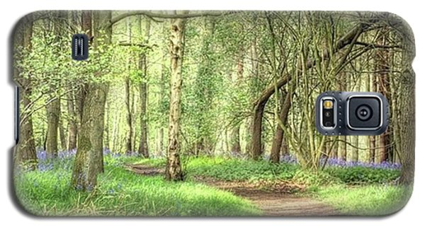 Galaxy S5 Case - Bentley Woods, Warwickshire #landscape by John Edwards
