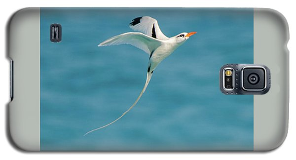 Bermuda Longtail S Curve Galaxy S5 Case
