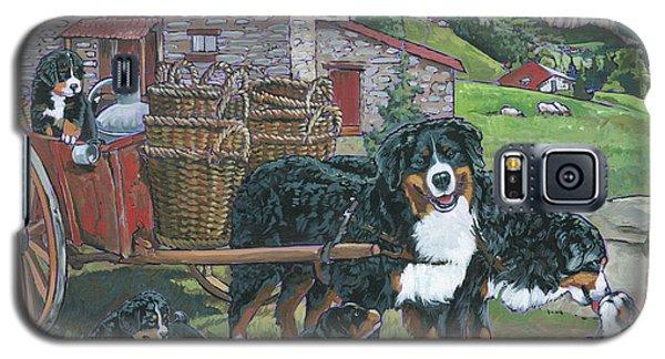 Bernese Mountain Dog Galaxy S5 Case
