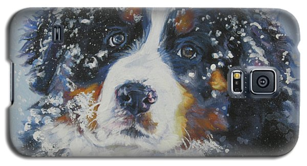 Bernese Mountain Dog Puppy Galaxy S5 Case