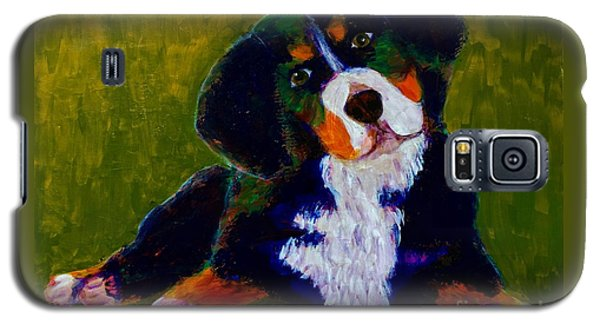 Galaxy S5 Case featuring the painting Bernese Mtn Dog Puppy by Donald J Ryker III