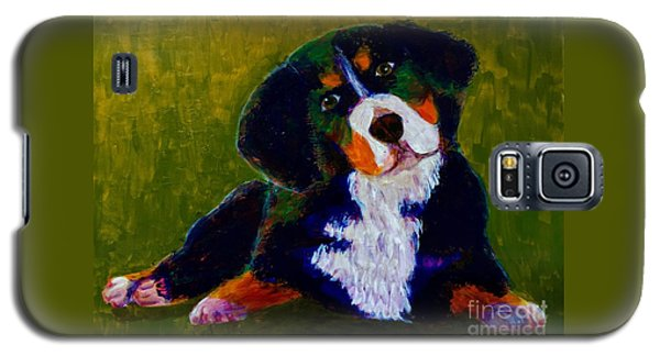 Bernese Mtn Dog Puppy Galaxy S5 Case