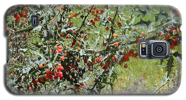 Berries On The Vine Galaxy S5 Case