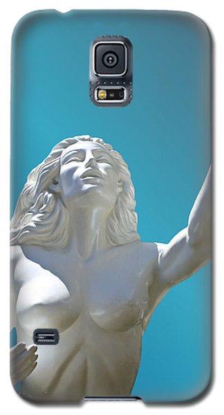 Beseech Galaxy S5 Case by Kristin Elmquist