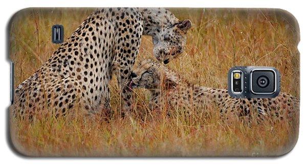 Cheetah Galaxy S5 Case - Best Of Friends by Smart Aviation