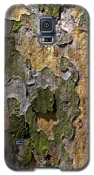 Galaxy S5 Case featuring the photograph Between Light And Shadow by Lynda Lehmann