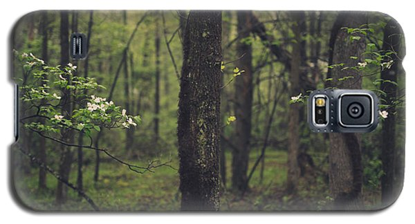 Between The Dogwoods Galaxy S5 Case by Shane Holsclaw