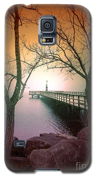 Between Two Trees Galaxy S5 Case by Tara Turner