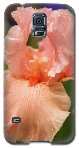Beverly Sills Iris, 2 Galaxy S5 Case