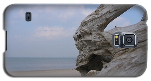 Galaxy S5 Case featuring the photograph Driftwood by Maciek Froncisz