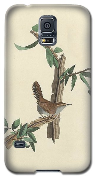 Bewick's Long-tailed Wren Galaxy S5 Case by Rob Dreyer
