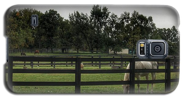 1004 - Beyond The Fence White Horse Galaxy S5 Case