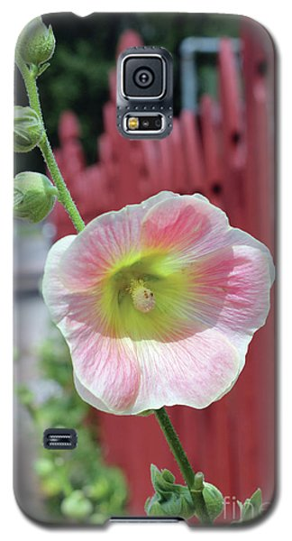 Beyond The Garden Fence Galaxy S5 Case