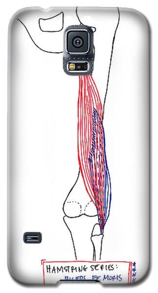 Biceps Femoris Galaxy S5 Case